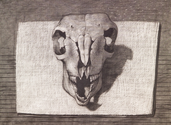 youssef-abdelke-skull-works-on-paper