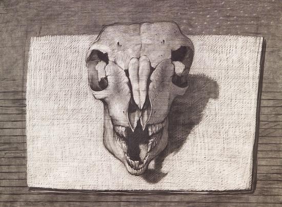 youssef-abdelke-skull-works-on-paper